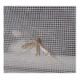 Plase insecte Bucuresti. Preturi plase impotriva insectelor Bucuresti